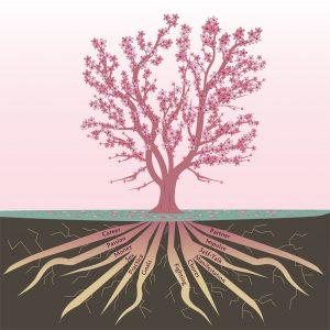 rtf cherry tree